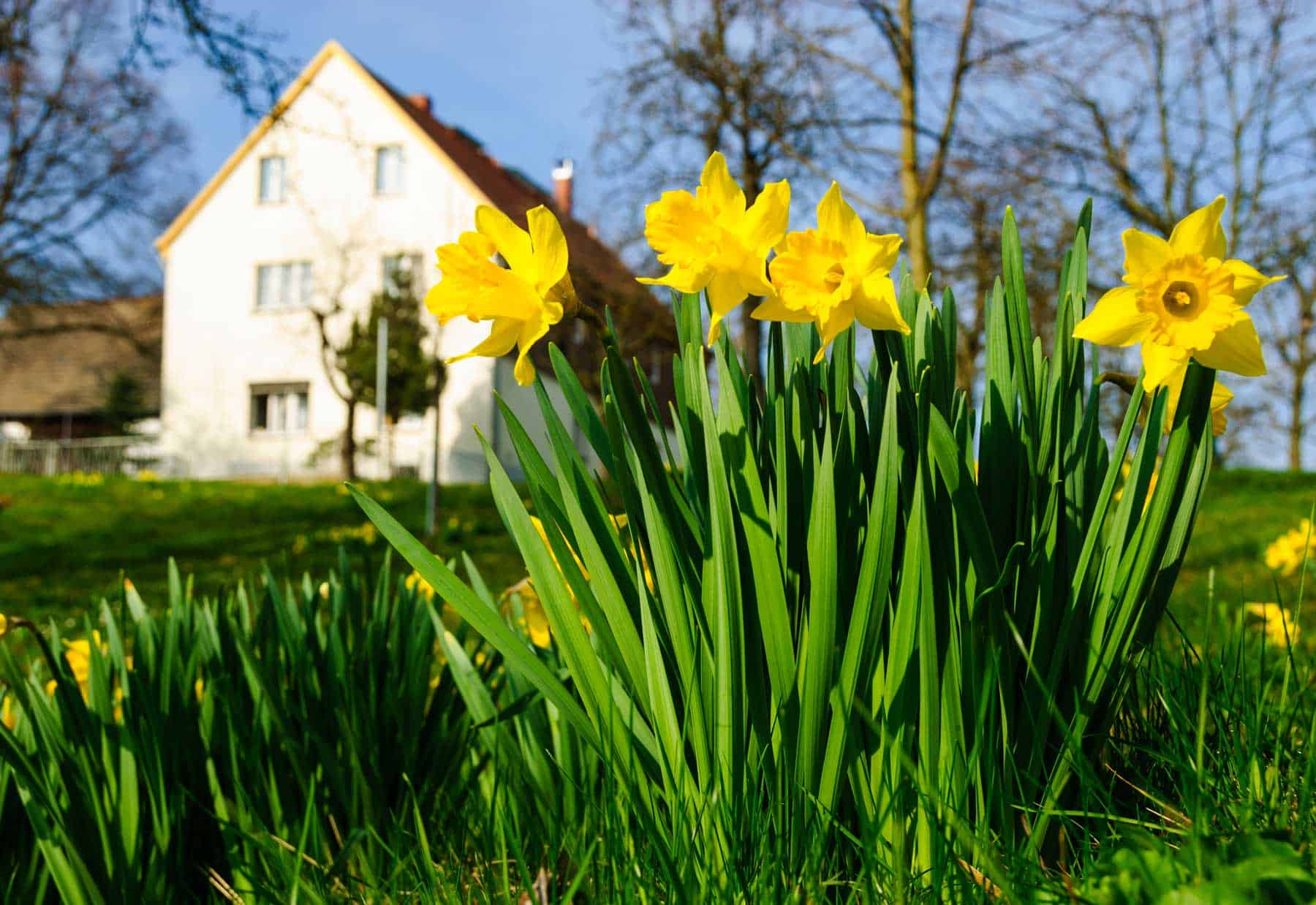 Read more about the article Spring is transition time for Green Bay heating and cooling